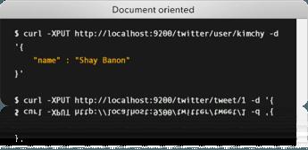 Elasticsearch Document Oriented