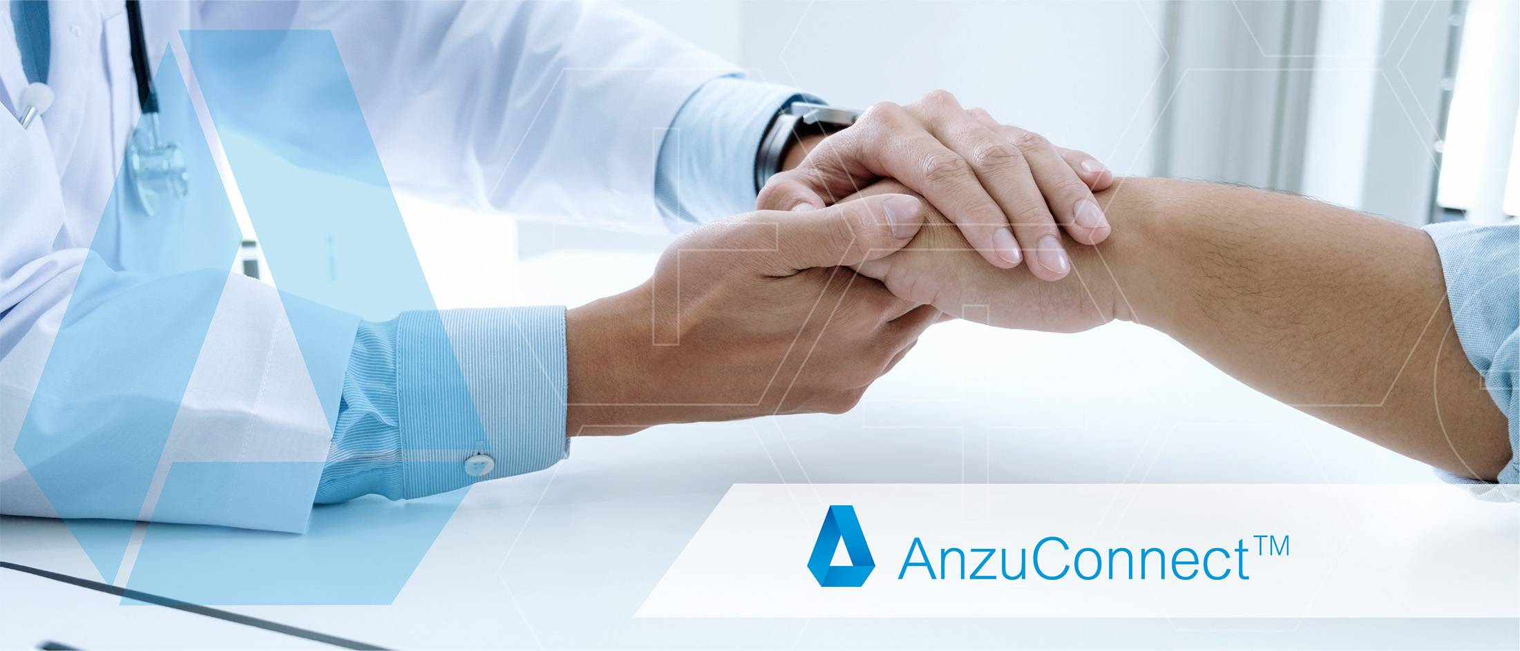 Anzu Connect - Our Work